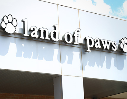 land of paws overland park pet store.