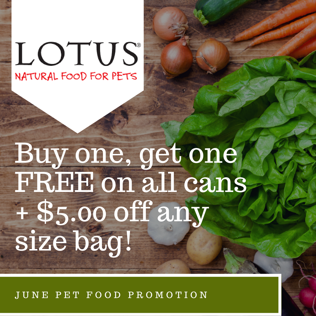 kansas city lotus dog food special